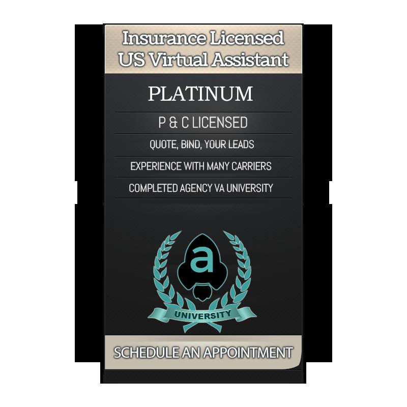 Insurance Virtual Assistant Platinum Service Badge