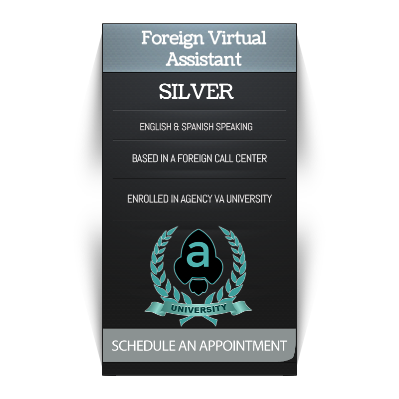 Insurance Virtual Assistant Silver Service Badge